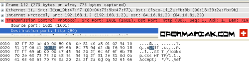 wireshark packet dissector pane